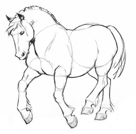 - Comment dessiner un poney ...